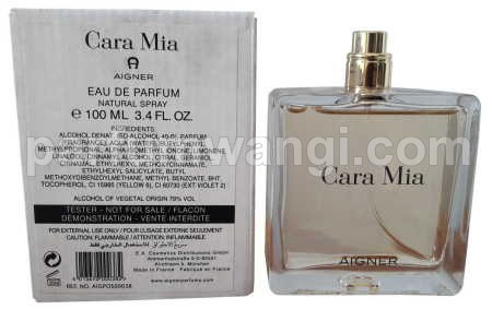 Aigner Cara Mia Women Edp 100ml TESTER